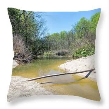 Chesapeake Tributary Throw Pillow