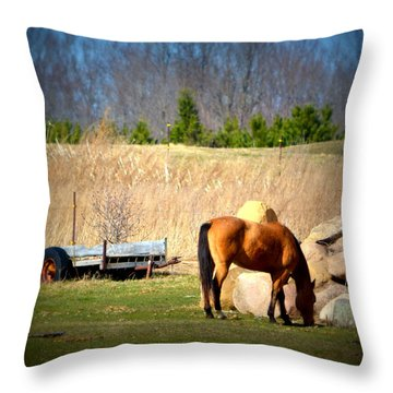 Chestnut Country Throw Pillow