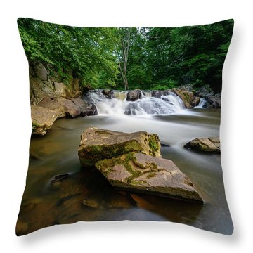 Chestnut Creek Falls  Throw Pillow