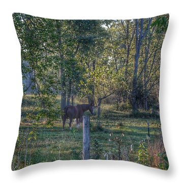 1009 - Chestnut Horse Among The Trees Throw Pillow
