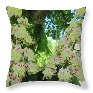 Chestnut Tree Flowers Throw Pillow