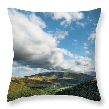 Cheviot And The College Valley Throw Pillow