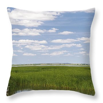 Cheyenne Bottoms Throw Pillow