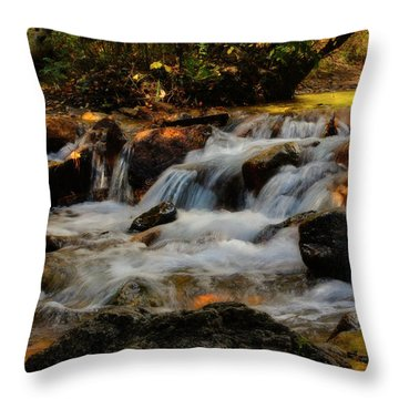 Throw Pillow featuring the photograph Cheyenne Canyon Autumn by Ellen Heaverlo