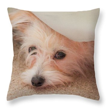 Chica In Hiding Throw Pillow