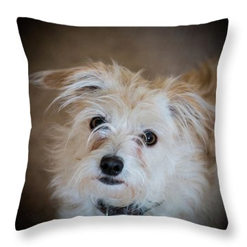 Chica On The Alert Throw Pillow