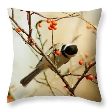 Chickadee 1 Of 2 Throw Pillow by Robert Frederick