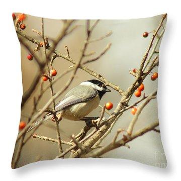 Chickadee 2 Of 2 Throw Pillow by Robert Frederick