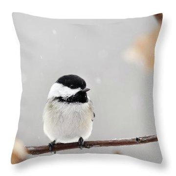 Chickadee Bird In Snow Throw Pillow by Christina Rollo