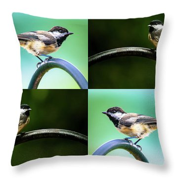 Throw Pillow featuring the photograph Chickadee Duo Composite by Onyonet  Photo Studios
