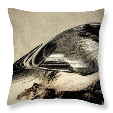 Chickadee Feathers Throw Pillow