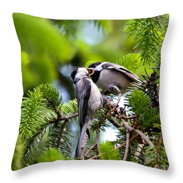 Chickadee Feeding Time Throw Pillow