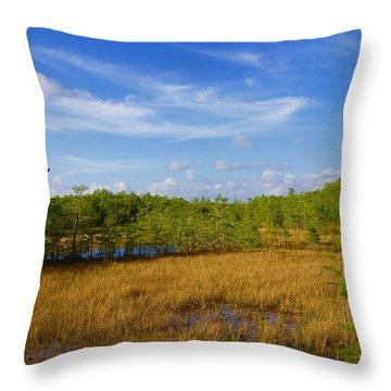 Chickee Hut Throw Pillow