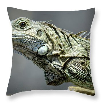 Chicken Of The Trees Throw Pillow