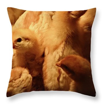 Throw Pillow featuring the photograph Chicks by Mary Machare