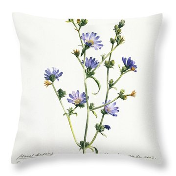 Chicory Throw Pillow