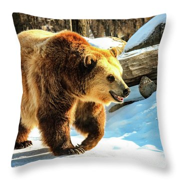 Chief Walking Bear Throw Pillow