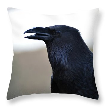 Chihuahua Raven Profile Throw Pillow
