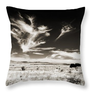 Chihuahuan Desert In Sepia Throw Pillow
