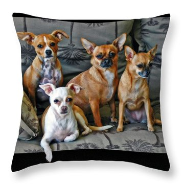 Chihuahuas Hanging Out Throw Pillow