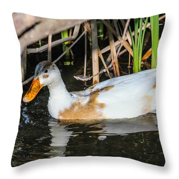 Chilling Throw Pillow by Robert Hebert