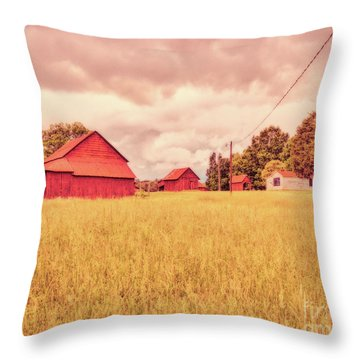 Childhood Delight Throw Pillow