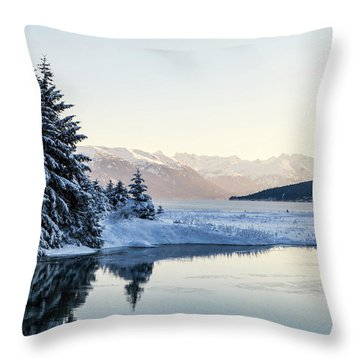 Chilkoot Inlet In Winter Throw Pillow