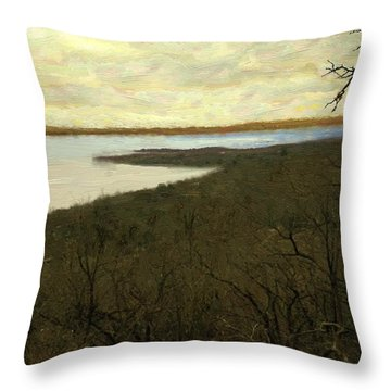 Chill Spring Throw Pillow by RC deWinter