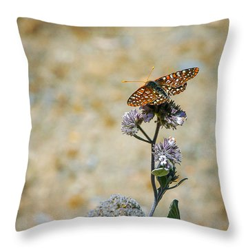 Chillin' In Color Throw Pillow
