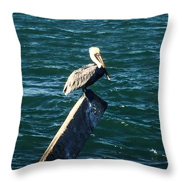 Chillin Throw Pillow