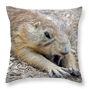 Chillin' Prairie Dog Throw Pillow