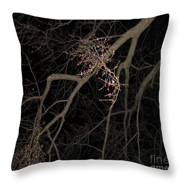 Chilling Night Throw Pillow