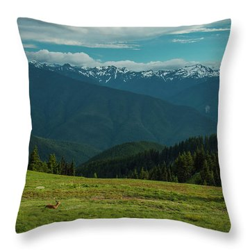 Chilling Out At Dusk Throw Pillow