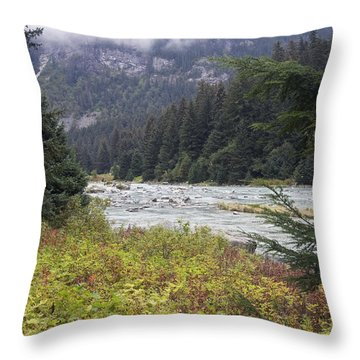 Chillkoot River 3 Throw Pillow