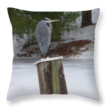 Chilly Blue Heron Throw Pillow