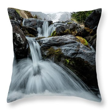 Throw Pillow featuring the photograph Chilly Spring Shower by Tim Newton