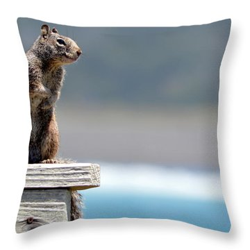 Chilly Squirrel Throw Pillow