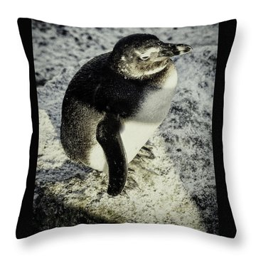 Chillypenguin Throw Pillow