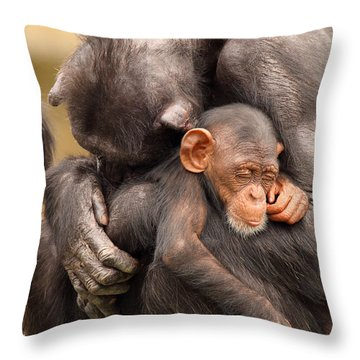 Throw Pillow featuring the photograph Chimpanzee Mother And Baby by Max Allen