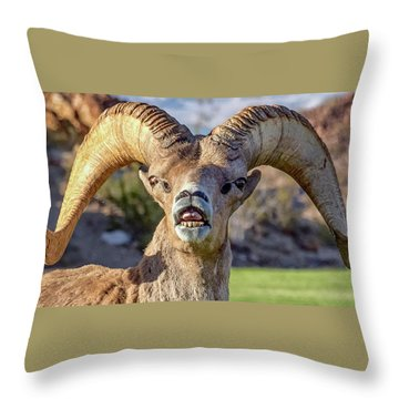 Chin Down Throw Pillow