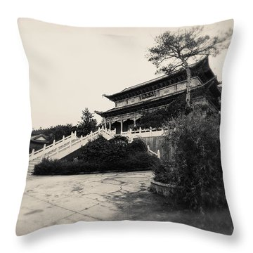 China #0640 Throw Pillow