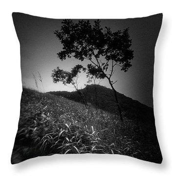 China #2419 Throw Pillow