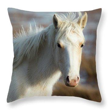 Chincoteague White Pony Throw Pillow