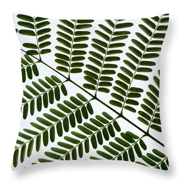 Chinese Albizia Leaf Pattern Throw Pillow