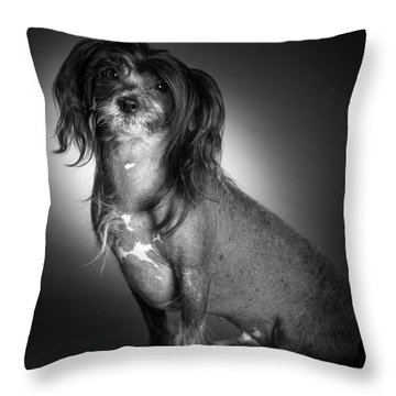 Chinese Crested - 01 Throw Pillow by Larry Carr