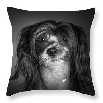 Throw Pillow featuring the photograph Chinese Crested - 02 by Larry Carr