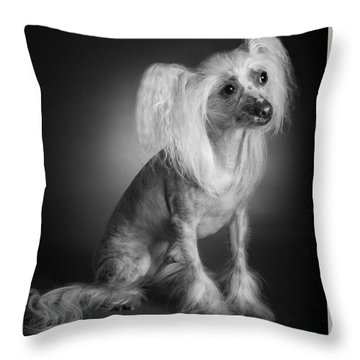 Throw Pillow featuring the photograph Chinese Crested - 03 by Larry Carr