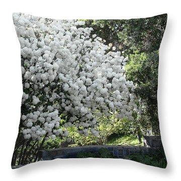 Chinese Snowball Bush Throw Pillow