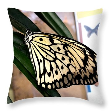 Chinese Yellow Swallowtail Throw Pillow