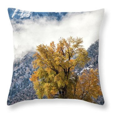 Chipeta And Cottonwood Throw Pillow